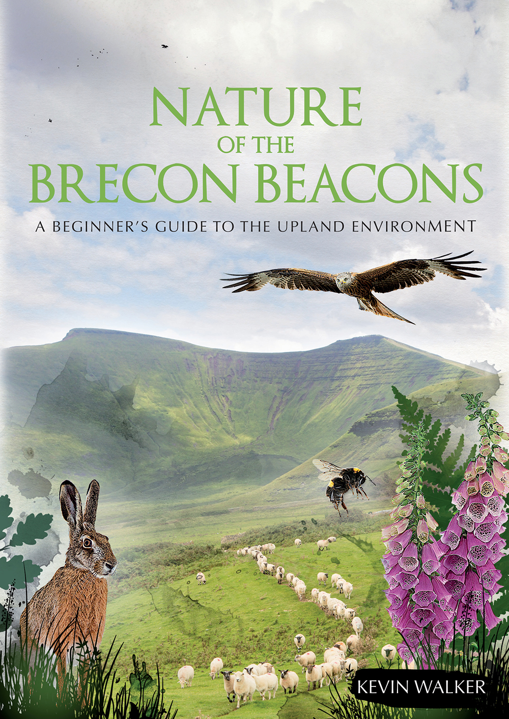 The Nature of the Brecon Beacons